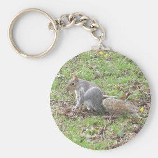 Cute Squirrel Scratching Keychain