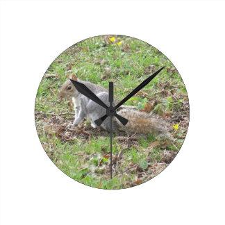 Cute Squirrel Scratching Round Clock
