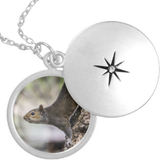 Cute Squirrel Silver Plated Necklace
