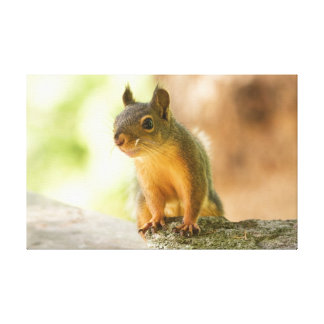 Cute Squirrel Smiling Canvas Print