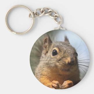 Cute Squirrel Smiling Closeup Photo Key Chains
