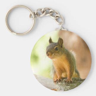 Cute Squirrel Smiling Keychain