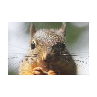 Cute Squirrel Smiling Photo Gallery Wrapped Canvas