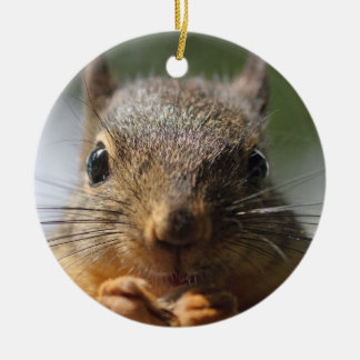 Cute Squirrel Smiling Photo Ceramic Ornament