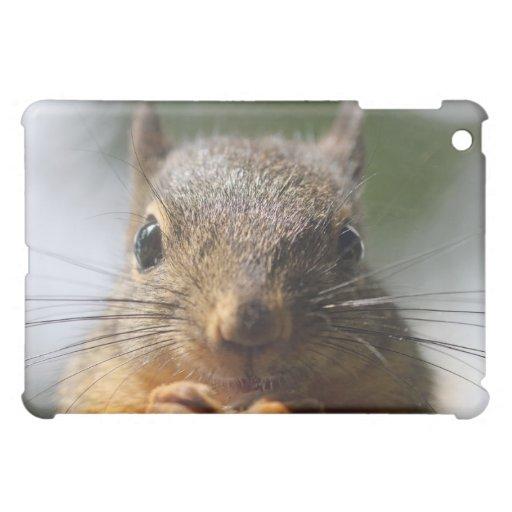 Cute Squirrel Smiling Photo iPad Mini Cover
