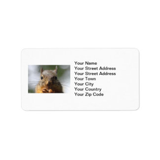 Cute Squirrel Smiling Photo Label