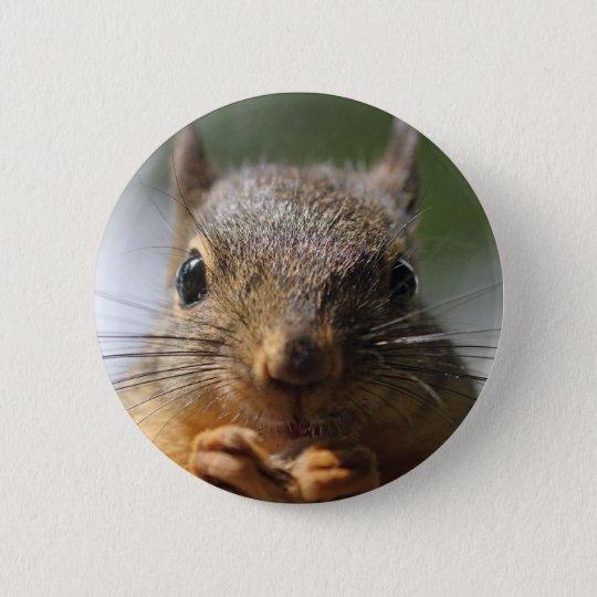 Cute Squirrel Smiling Photo Pinback Button
