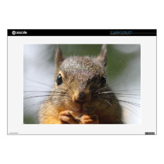 """Cute Squirrel Smiling Photo Skins For 15"""" Laptops"""
