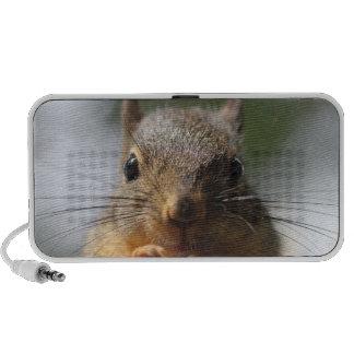 Cute Squirrel Smiling Photo iPod Speakers
