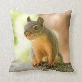 Cute Squirrel Smiling Pillows