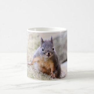 Cute Squirrel Staring Coffee Mug