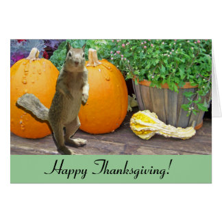 Cute Squirrel Thanksgiving Card