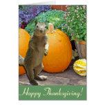 Cute Squirrel Thanksgiving Greeting Card