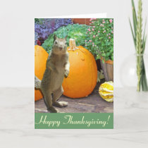 Cute Squirrel Thanksgiving Holiday Card