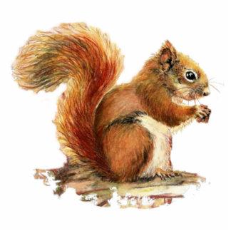 Cute Squirrel  Watercolor Animal Nature Cutout