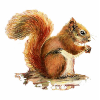 Cute Squirrel  Watercolor Animal Nature Standing Photo Sculpture