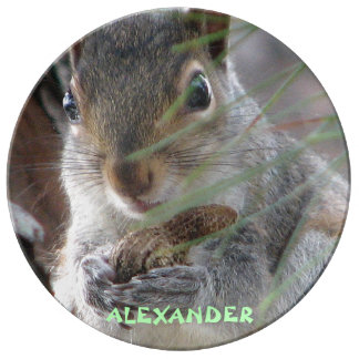 Cute Squirrel With Peanut Personalized Decorative Porcelain Plate