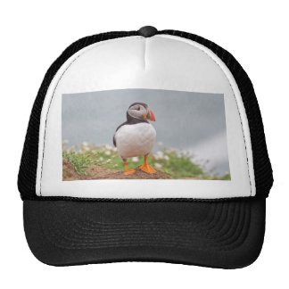 Cute Standing Puffin Mesh Hat
