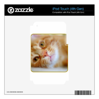 Cute Stinker The Cat Design Photo Image iPod Touch 4G Skin