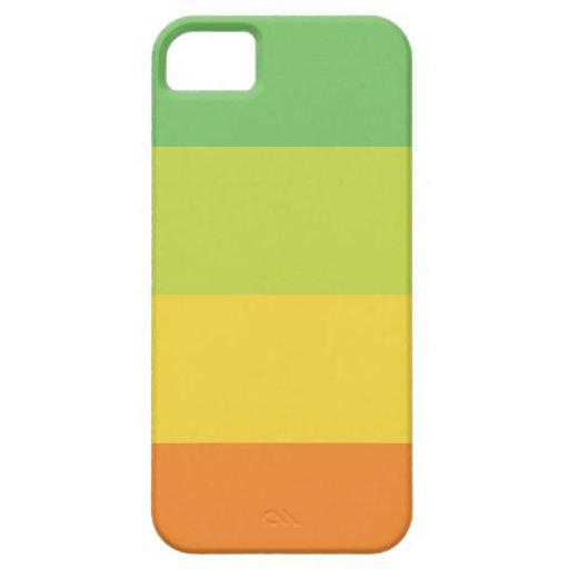 Cute stripes bright colorful iPhone 5 case