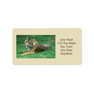 Cute Sumatran Tiger In The Grass Avery Label at Zazzle