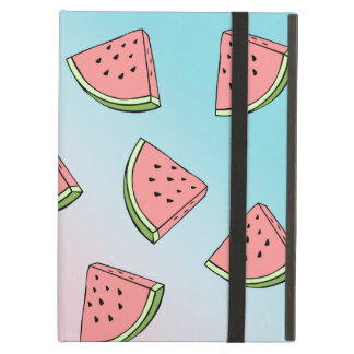 Cute summer watermelon pattern pastel pink & blue case for iPad air