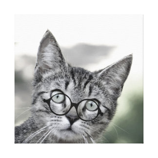 Cute Surprised Cat with Glasses Canvas Print