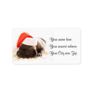 Cute Sweet Christmas Puppy Dog wear Santa hat Label