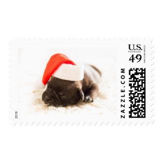 Cute Sweet Christmas Puppy Dog wear Santa hat Postage