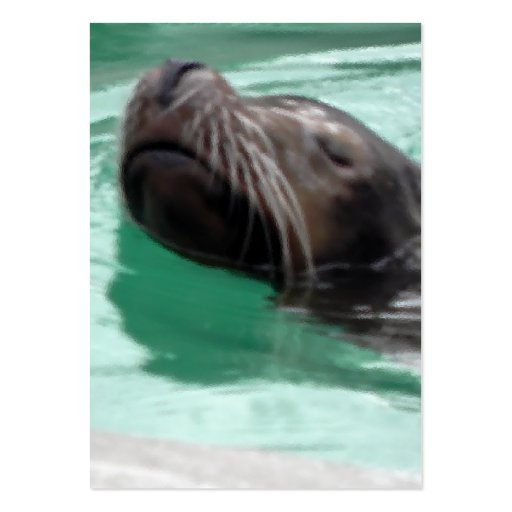 Cute Swimming Sea Lion Large Business Cards (Pack Of 100)