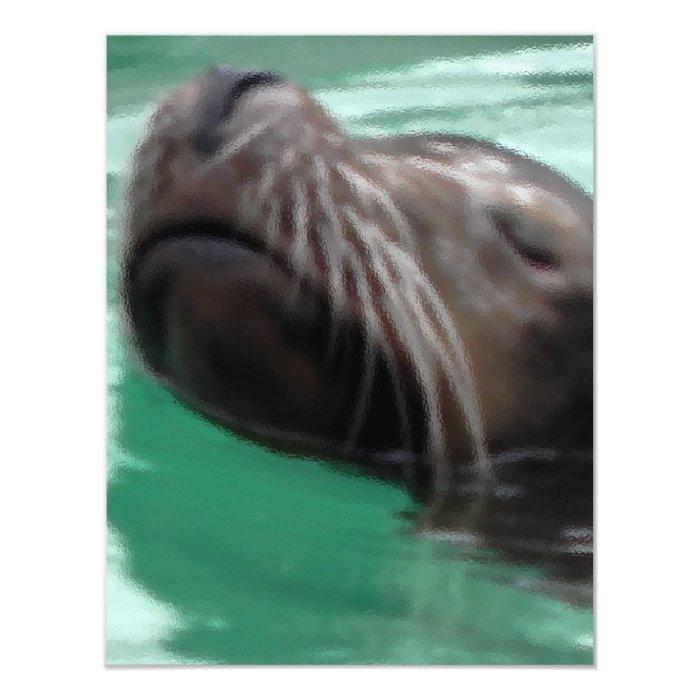 Cute Swimming Sea Lion Card