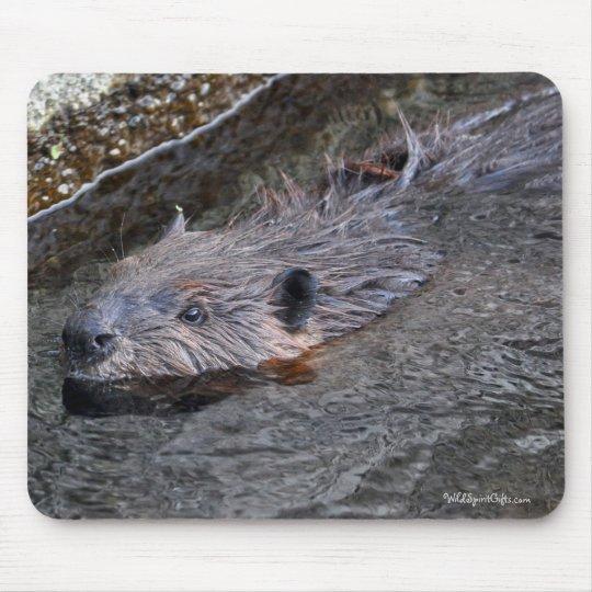 Cute Swimming Wild Beaver Wildlife Photo Mouse Pad