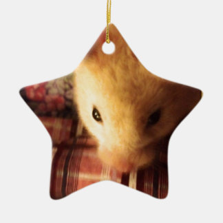 Cute Syrian Hamster Ceramic Ornament