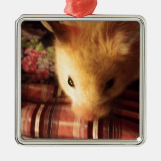 Cute Syrian Hamster Metal Ornament