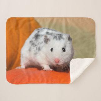 Cute Syrian Hamster White Black SpotsFunny Pet on Sherpa Blanket