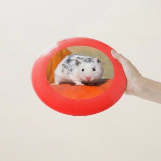 Cute Syrian Hamster White Black Spotted Funny Pet Wham-O Frisbee