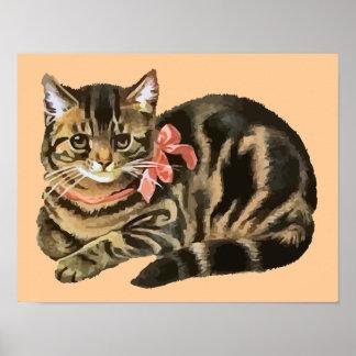 Cute Tabby Calico Cat / Kitten Poster