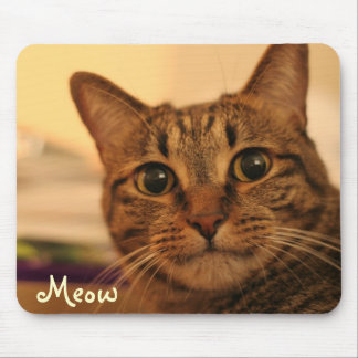 Cute tabby cat face mousepad