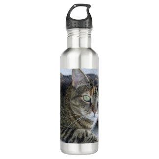 Cute Tabby Cat Photo Water Bottle
