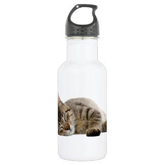 Cute tabby kitten stainless steel water bottle