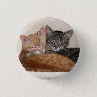 Cute Tabby Kittens Button / Badge