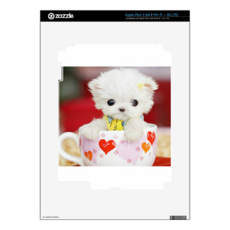 cute tea cup puppy skins for iPad 3