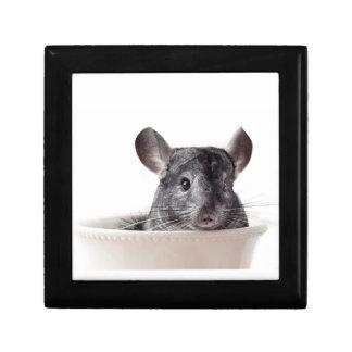 Cute Teacup Chinchilla Grey Jewelry Box