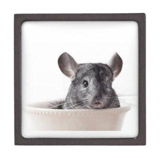 Cute Teacup Chinchilla Grey Premium Trinket Box