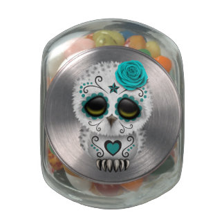 Cute Teal Day of the Dead Sugar Skull Owl Jelly Belly Candy Jar