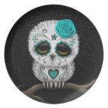 Cute Teal Day of the Dead Sugar Skull Owl Stars Dinner Plates