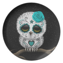 Cute Teal Day of the Dead Sugar Skull Owl Stars Melamine Plate