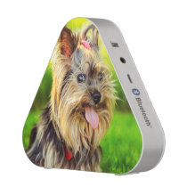 Cute terrier dog speaker