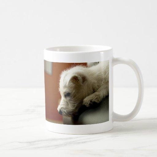 Cute Terrier Puppy Coffee Mug
