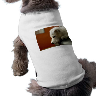 Cute Terrier Puppy Dog Clothing
